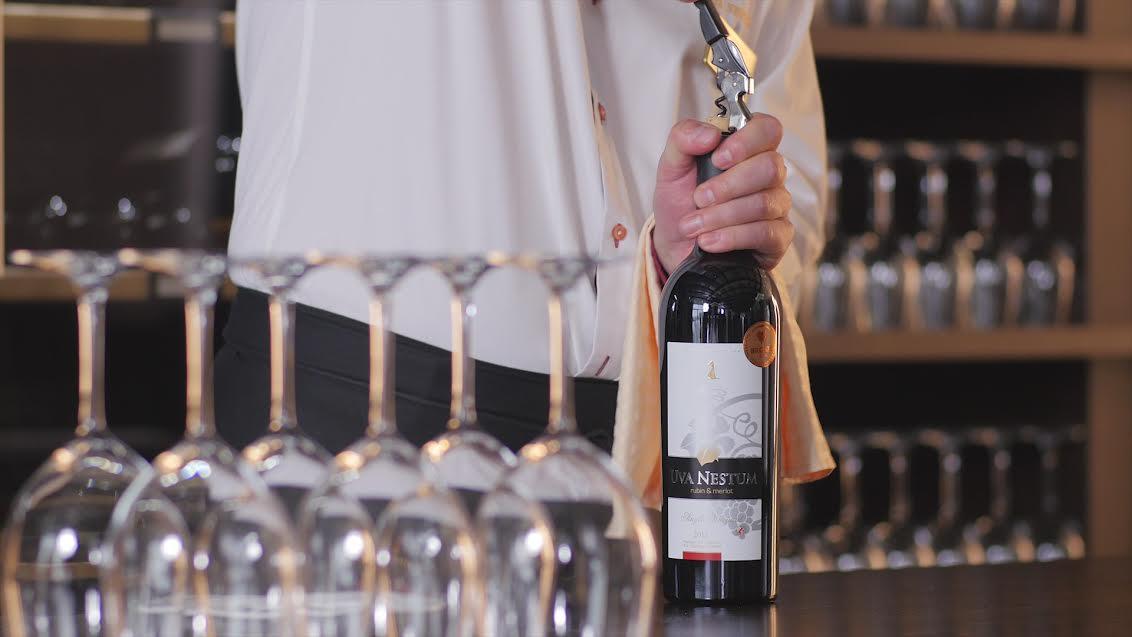 hotel uva nestum wine tour
