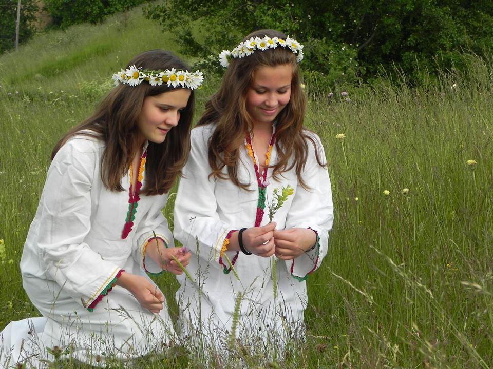 wild flowers festival