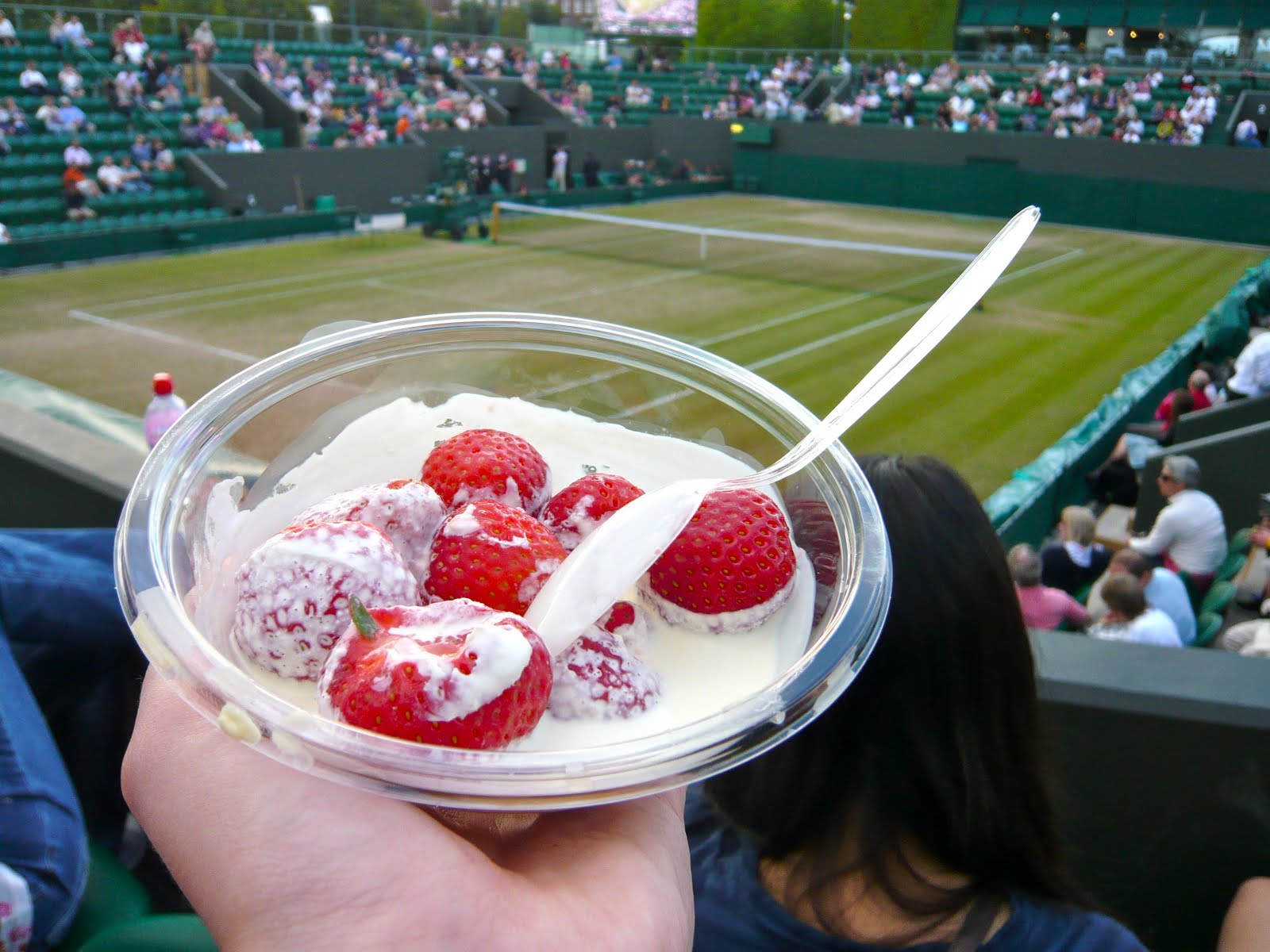 dessert strawberries albena tennis