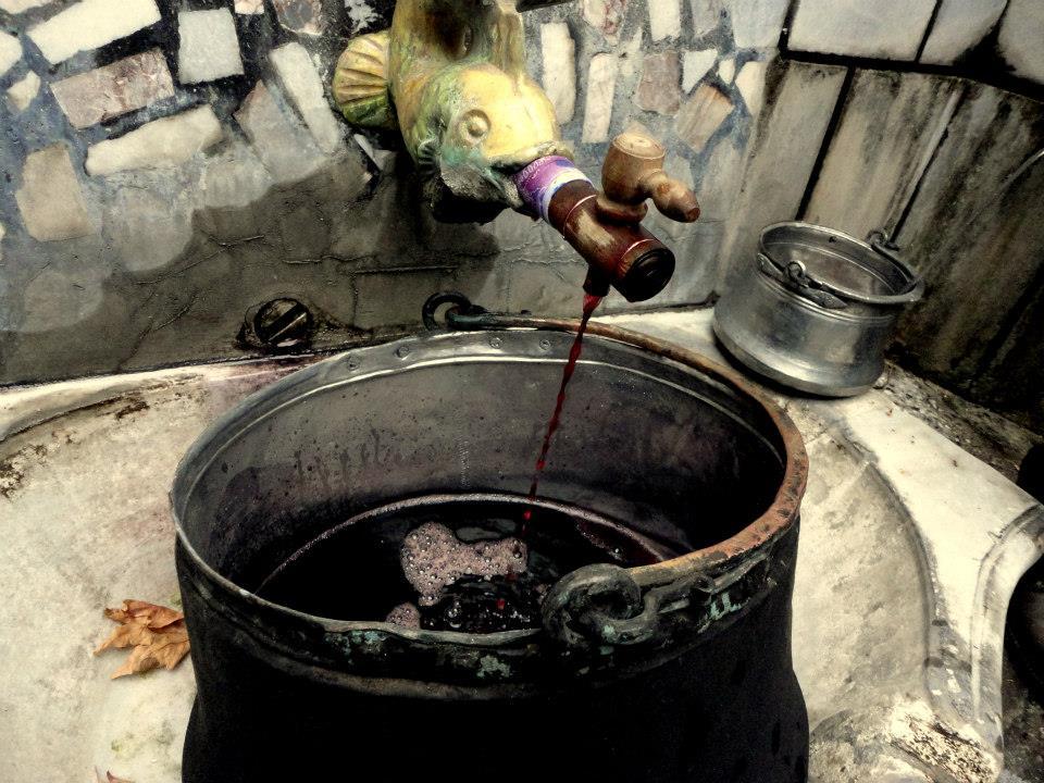 asenovgrad wine