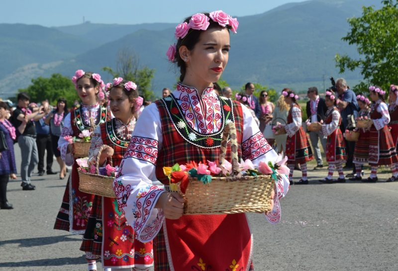 Kazanlak roses